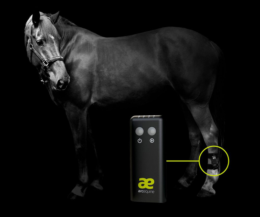 ArcEquine Microcurrent Therapy at Equipoise Performance